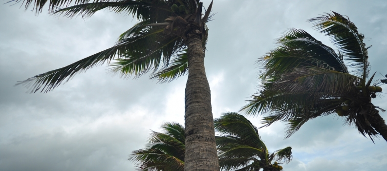 Weathering the Storm: Disaster Recovery Tips for Your Business